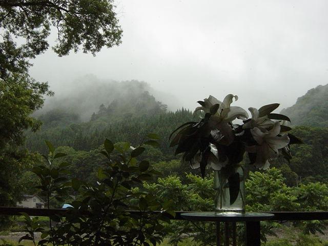 Rain (75k image)